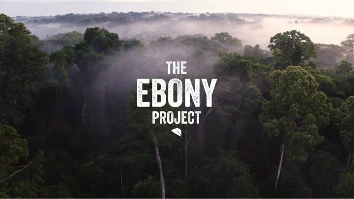 The Taylor Ebony Project