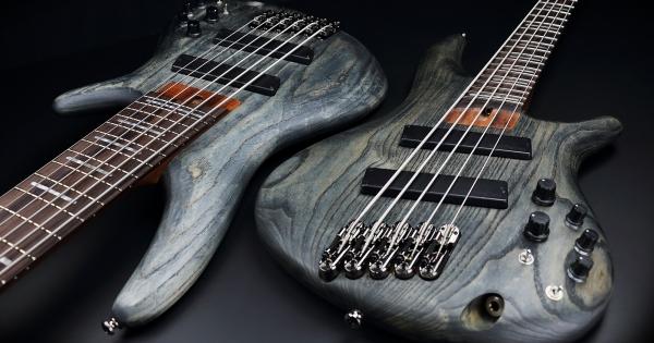Ibanez Fanned Fret Bass 2
