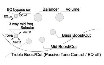 Ibanez Fanned Fret Bass 3