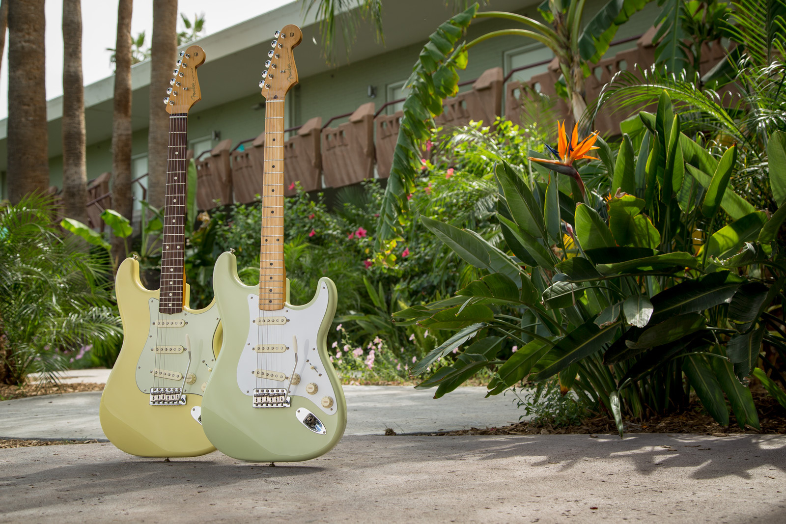 Fender Special Edition Strats