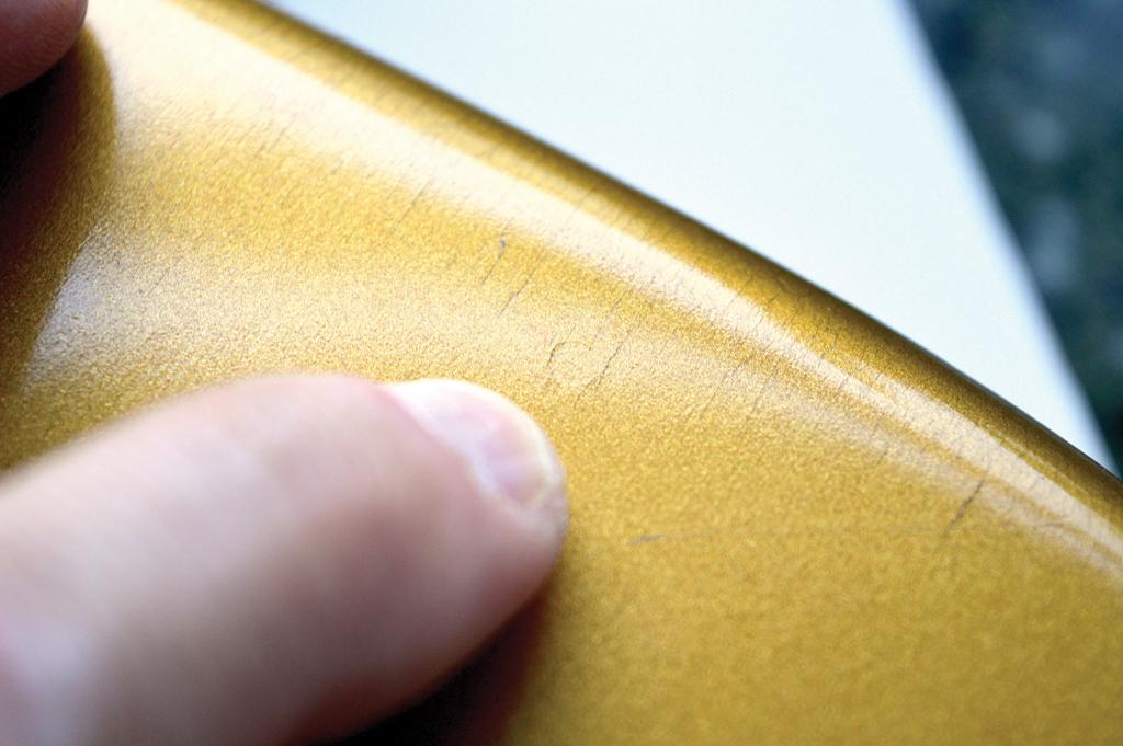 Pic 10 - Goldie dowel