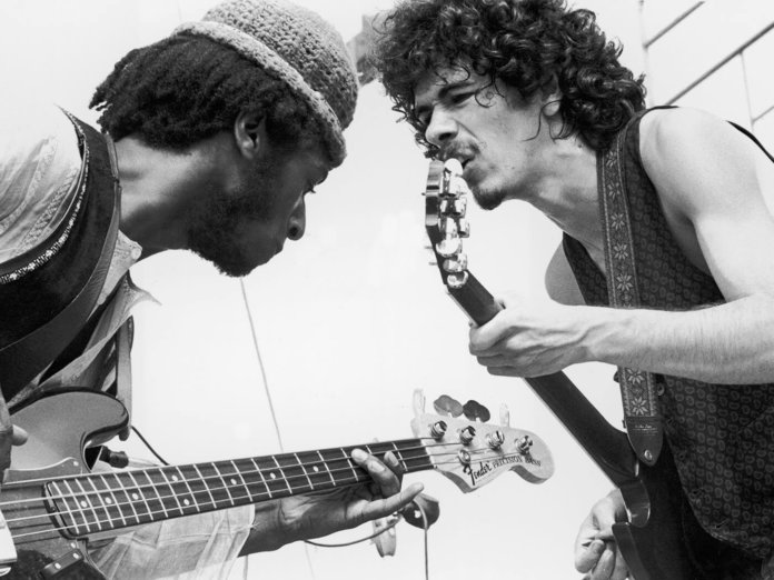 Santana David Brown Woodstock