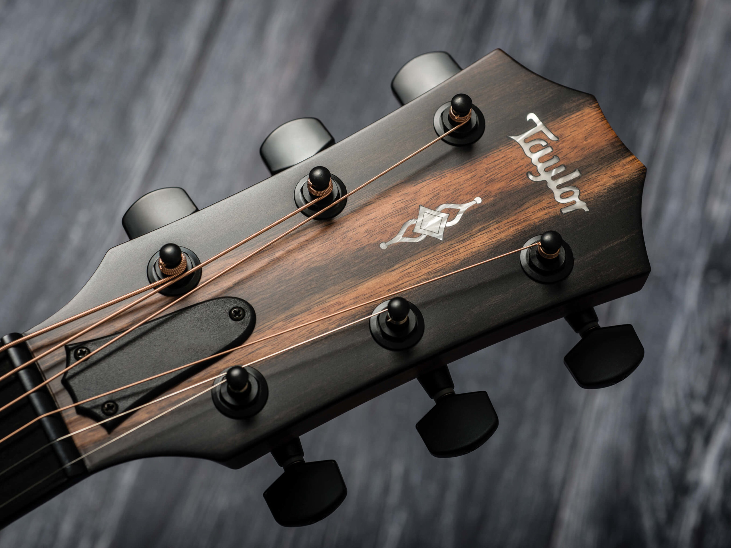 Taylor 322ce headstock