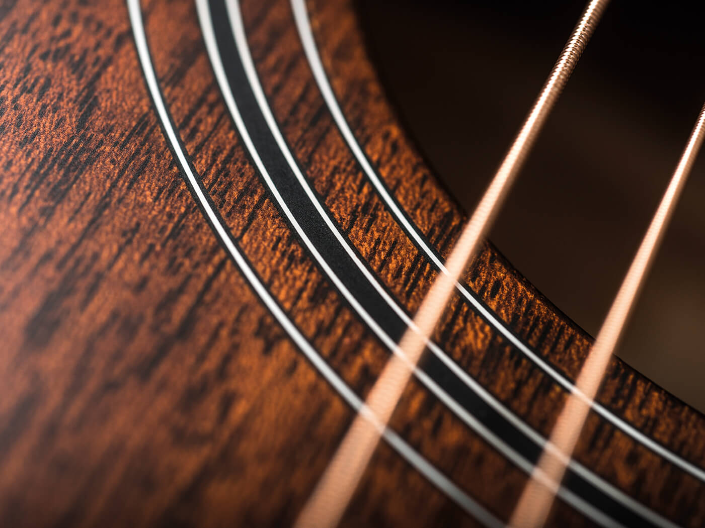 Taylor 322ce soundhole and rosette