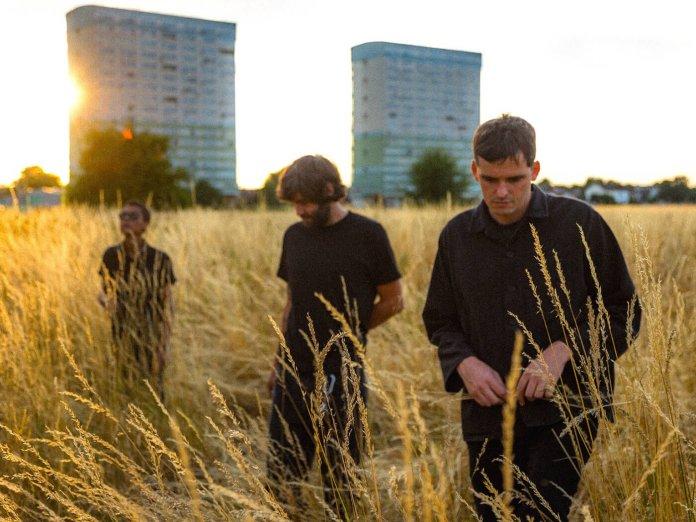 Modern Nature walking in wheat field