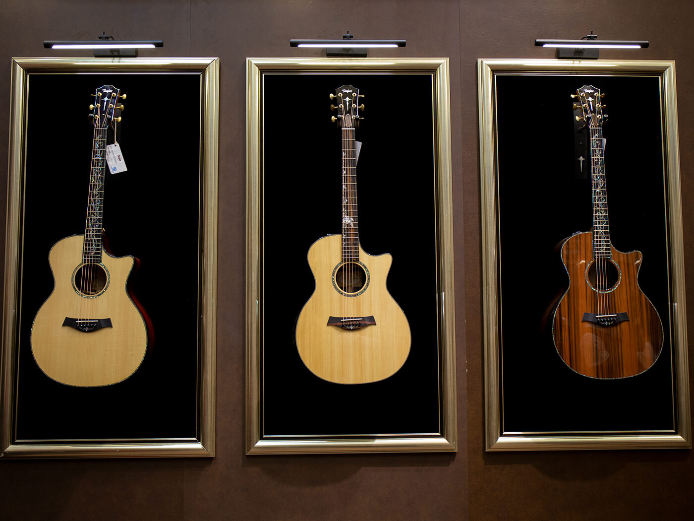 music china taylor guitars