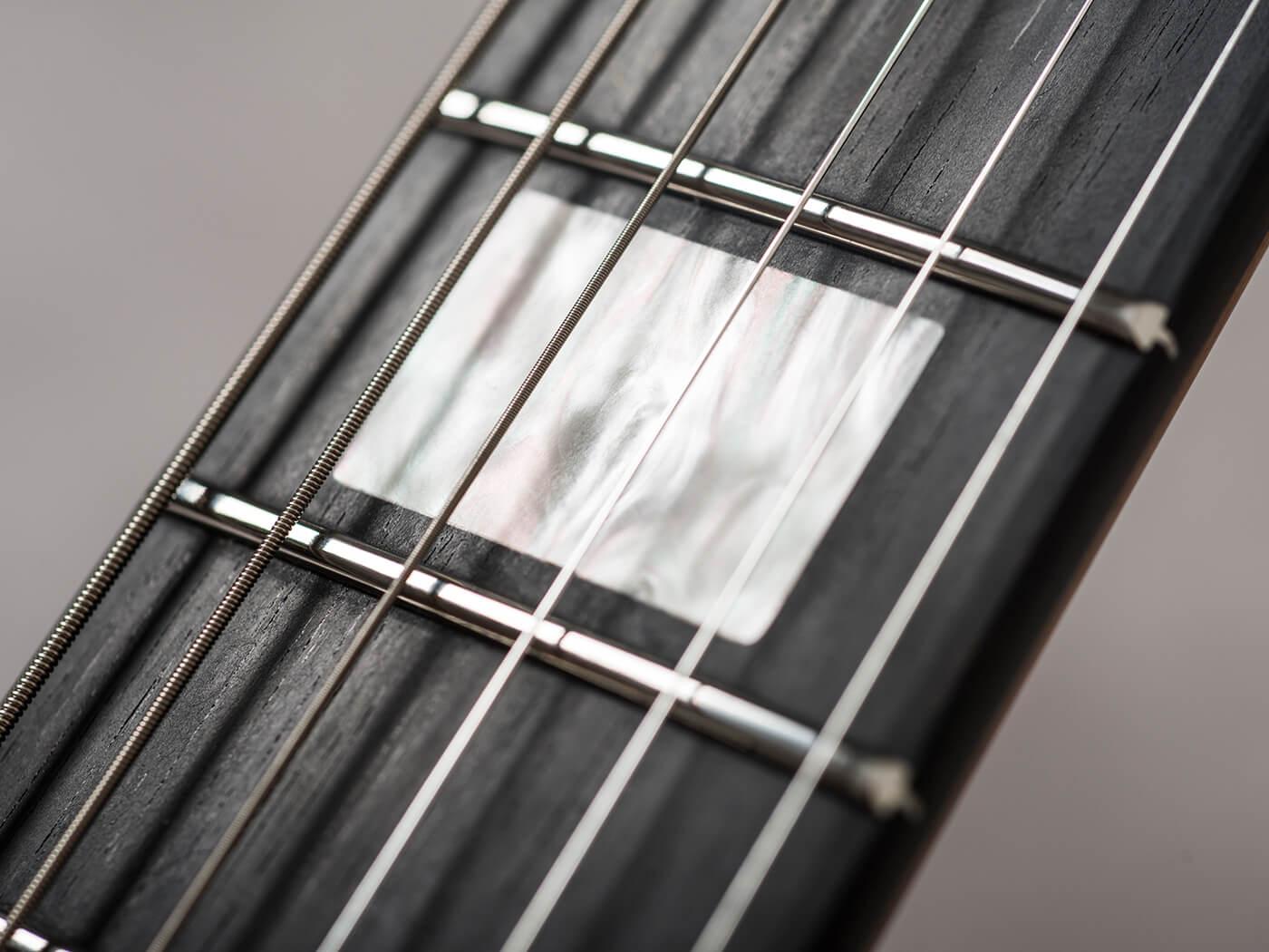 Music Man Mariposa (Fretboard)