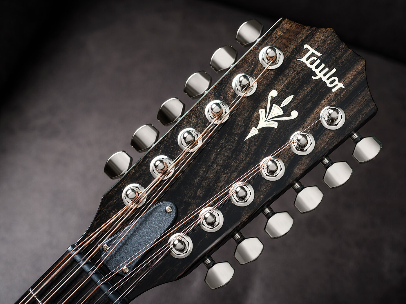 Taylor 562ce 12-String (Headstock)