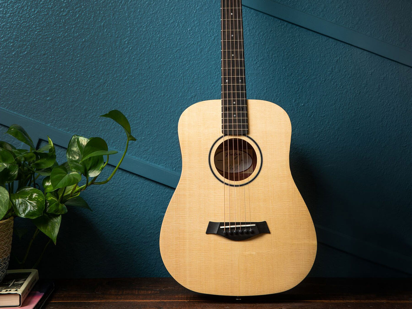 The Taylor BT1
