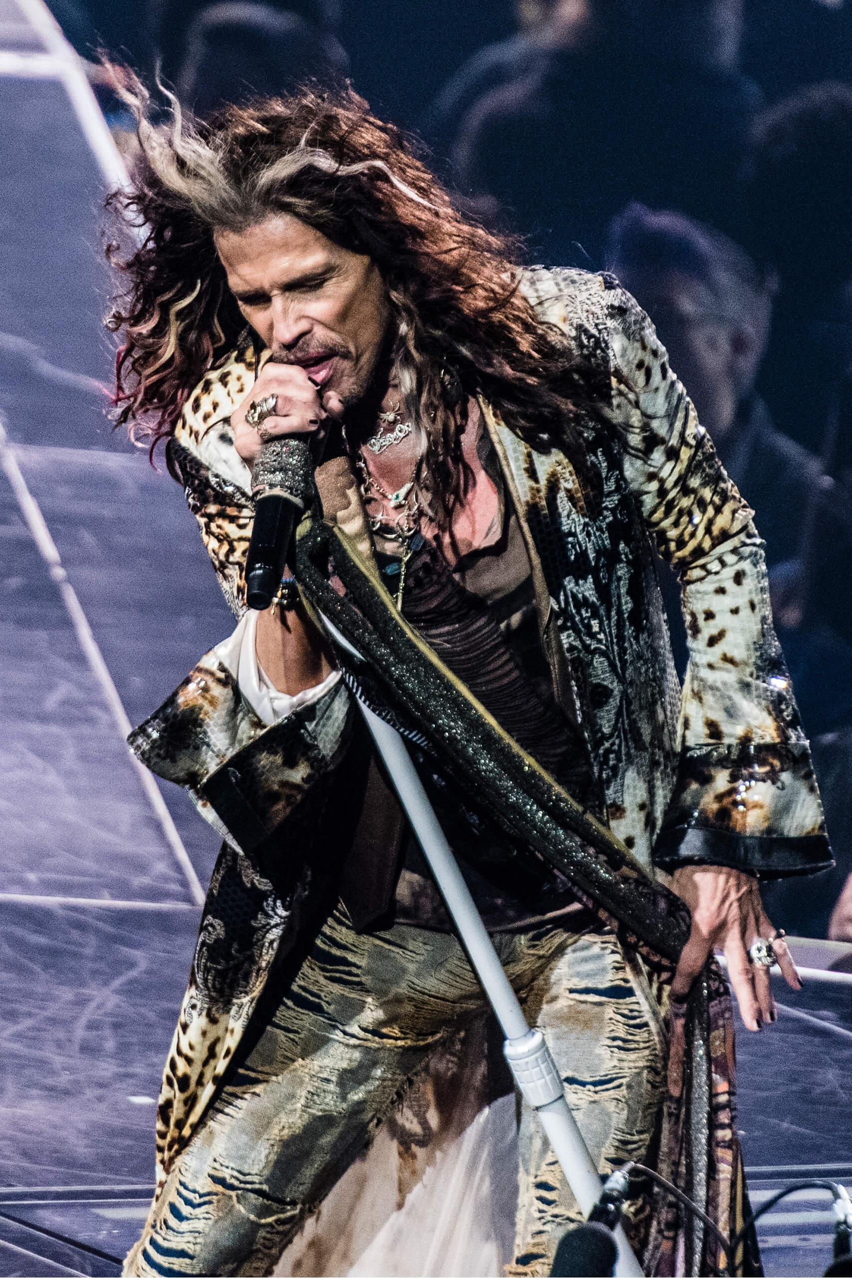 Aerosmith: Las Vegas Live (Steven Tyler)