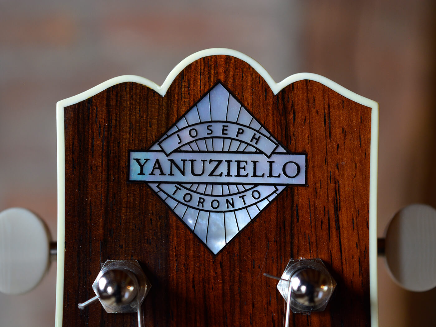 Joe Yanuziello Guitars