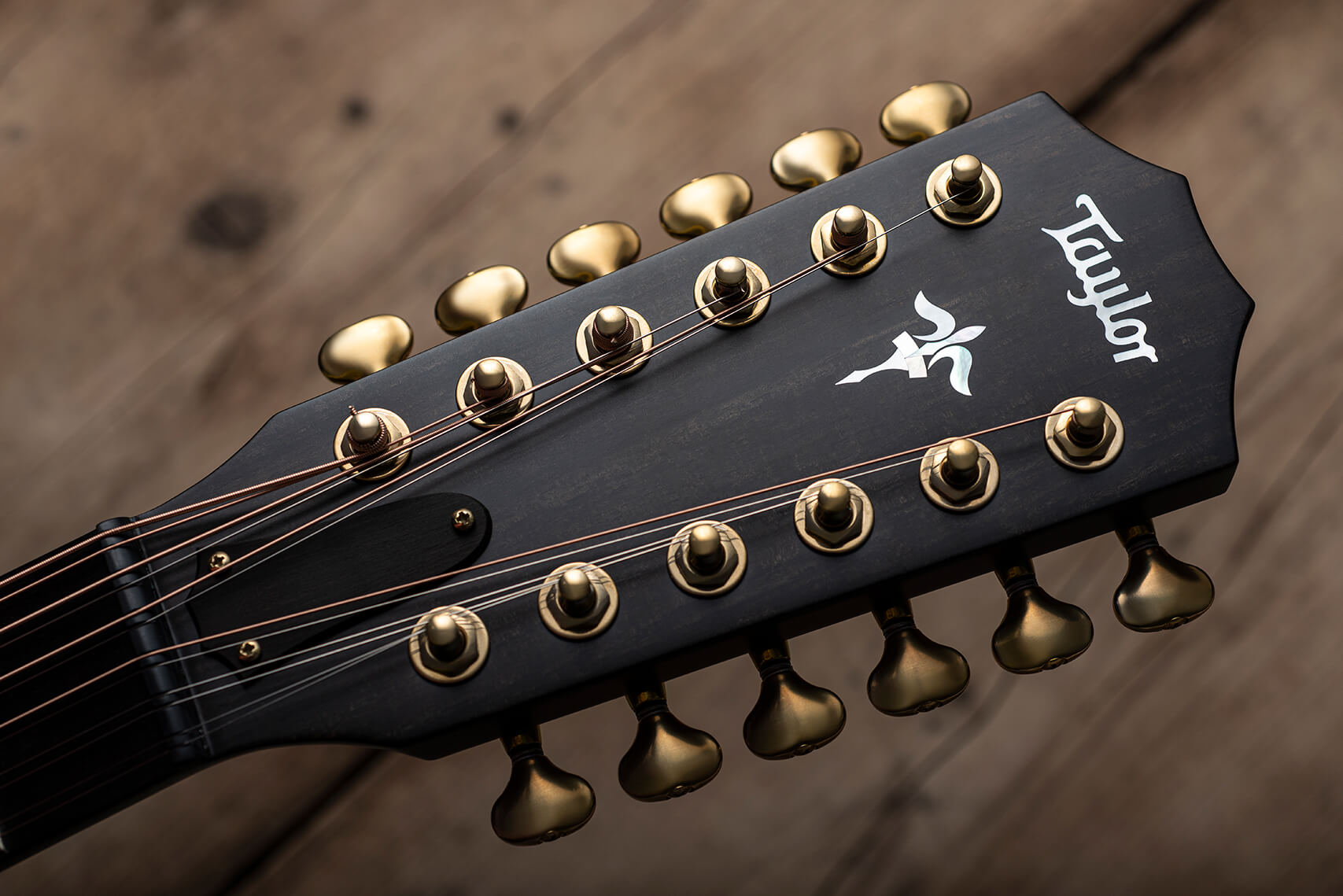 Taylor Builder's Edition 652ce 12 String Headstock