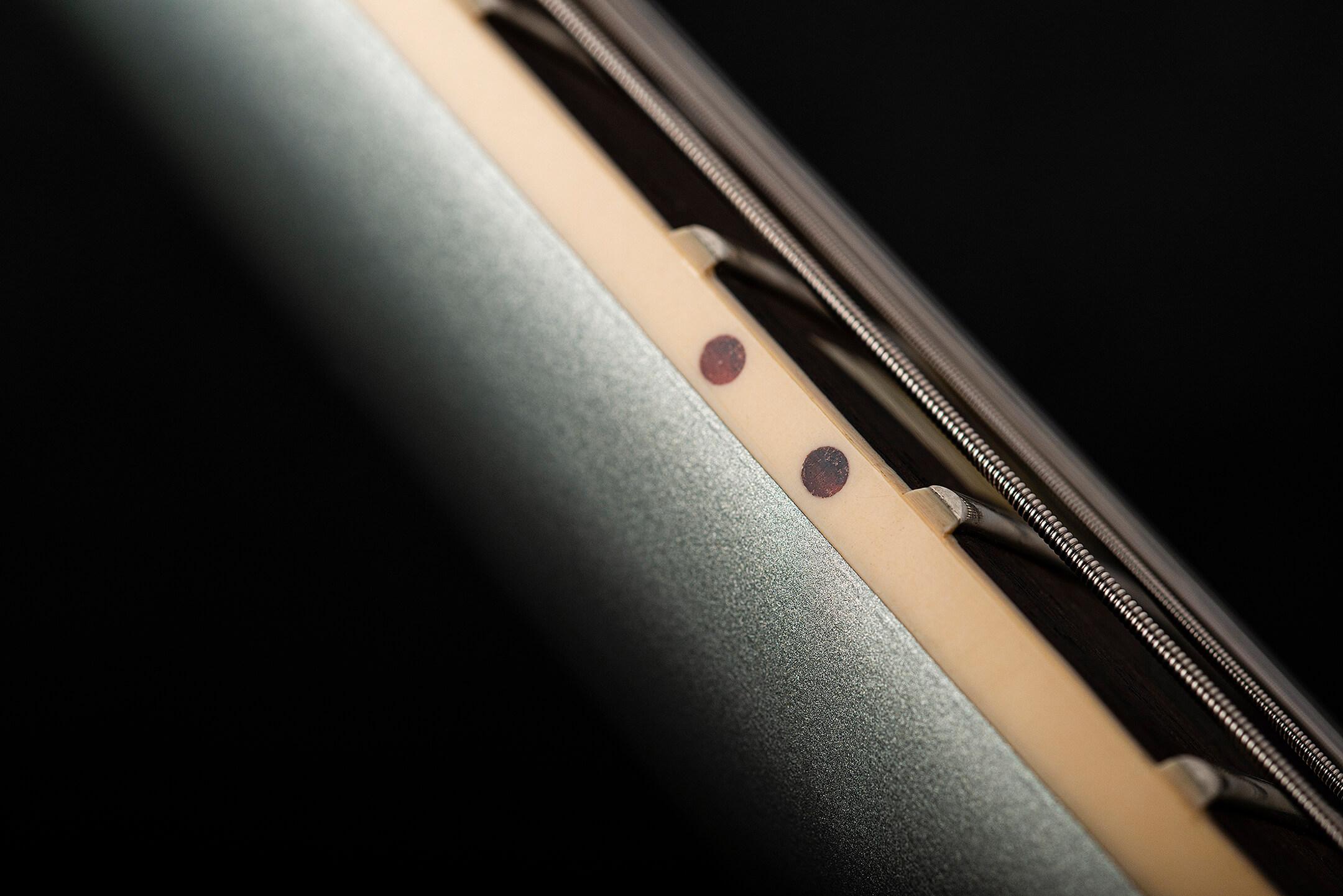 Gibson Custom '63 Firebird V Fretboard