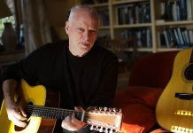 David Gilmour with his Martin D-35 12 String signature