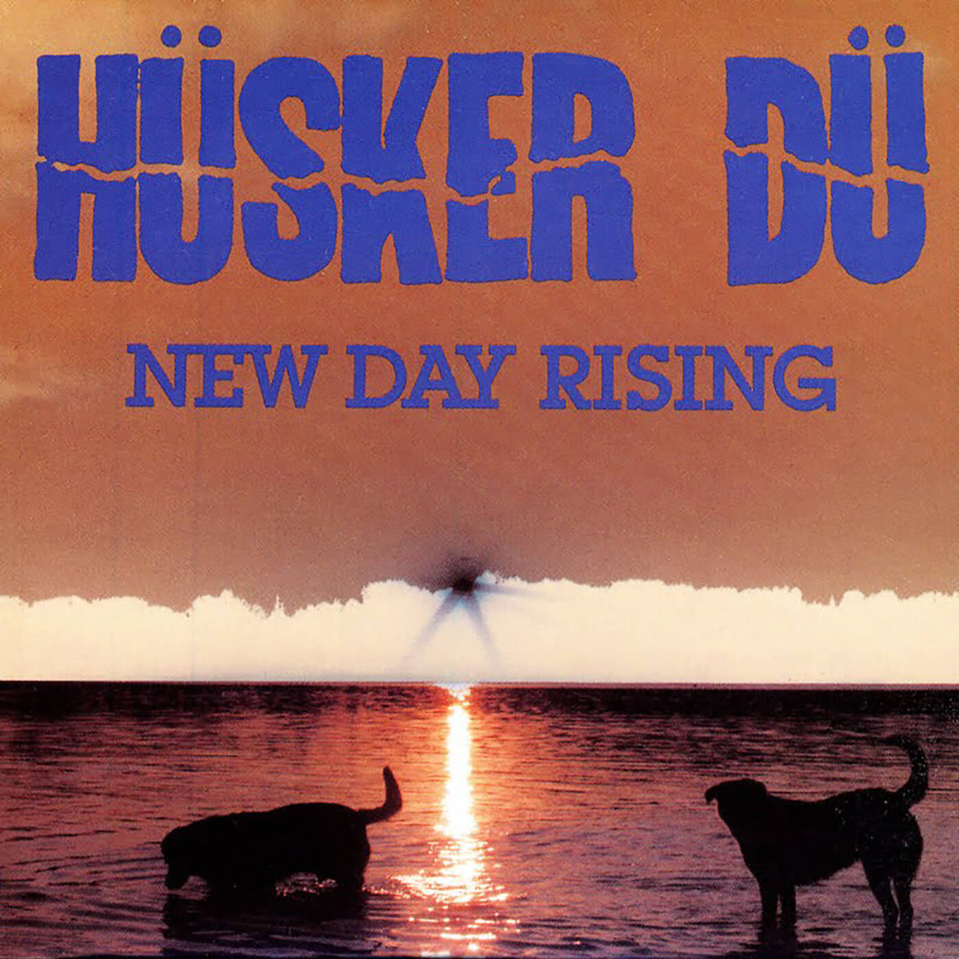 Hüsker Dü - New Day Rising
