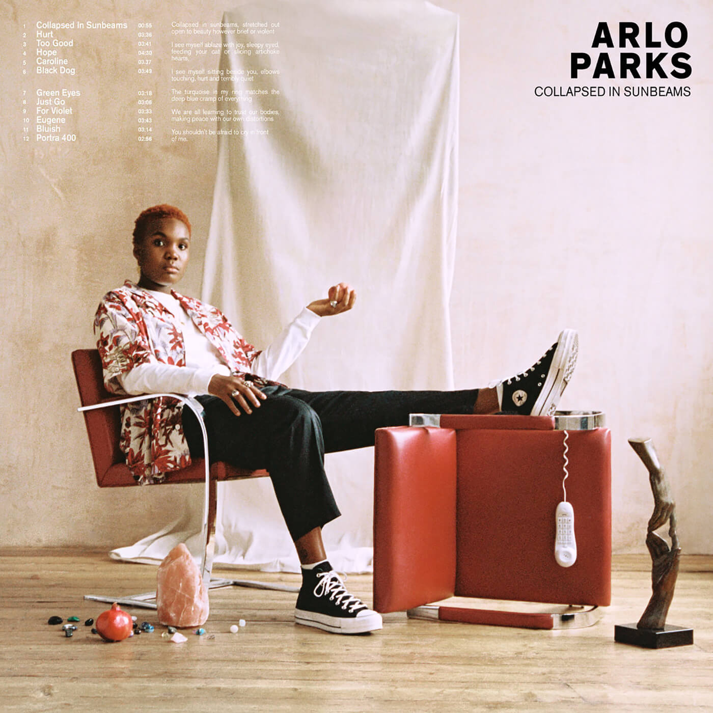 Arlo Parks - Collapsed In Sunbeams