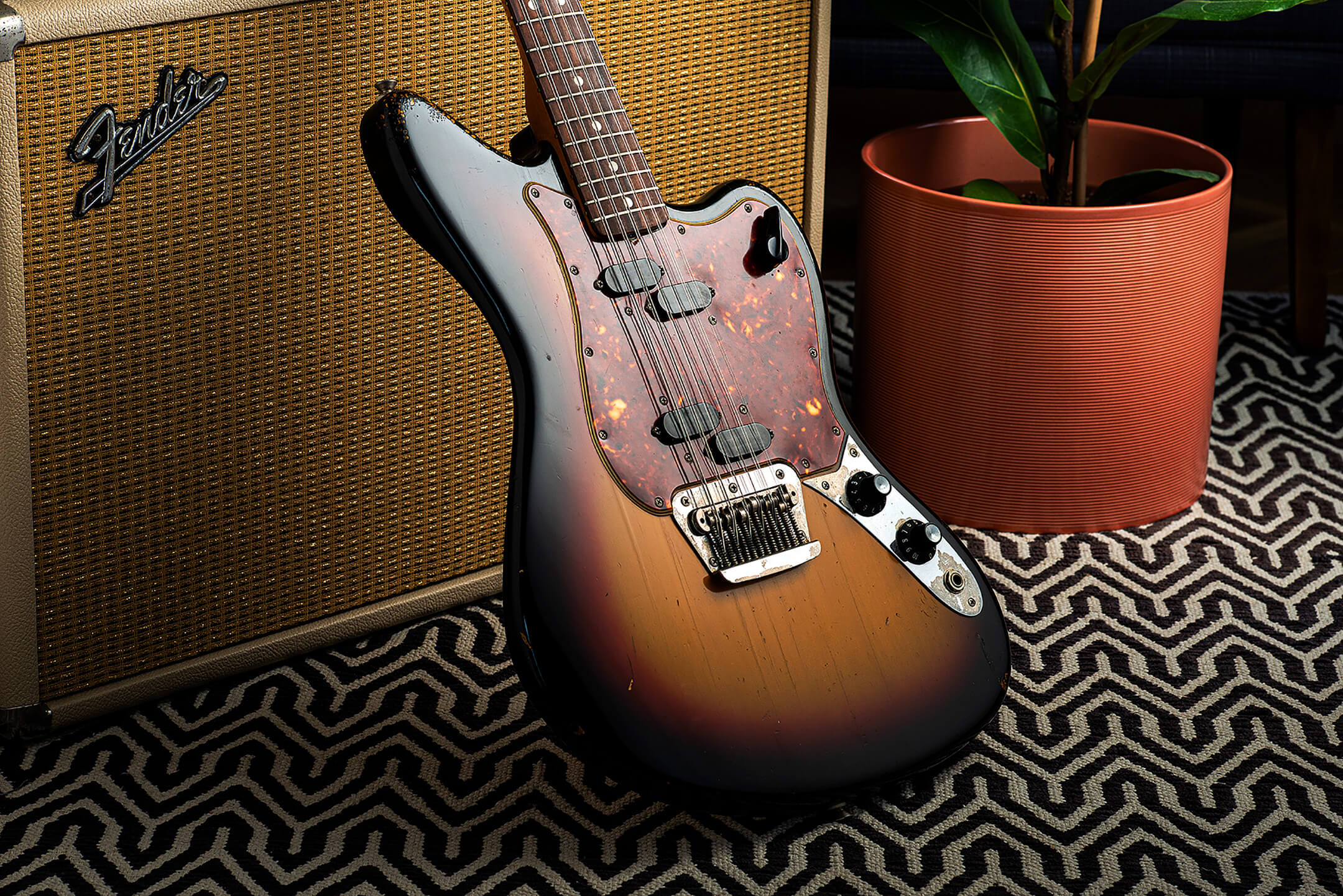 Marc Ransley's 1965 Fender Electric XII