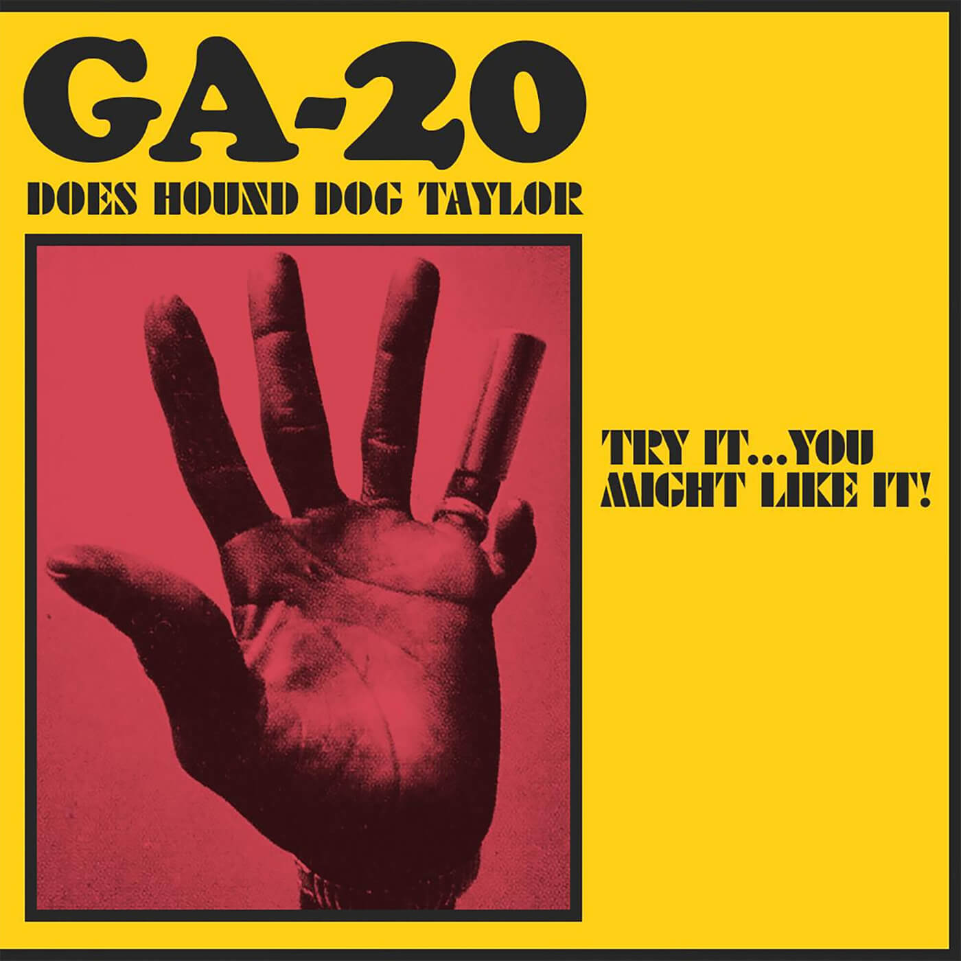 GA-20 - Try It... You Might Like It!